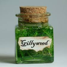 gillyweed harry potter potion small gift under 10 dollars or kit
