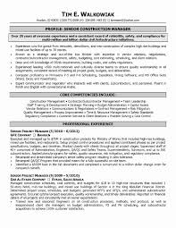 Senior Project Manager Resume Luxury Assisted Living Manager Resume