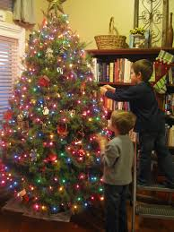 Christmas Ideas for Picturesque Christmas Tree Store In Waldorf Md and christmas  tree store dallas
