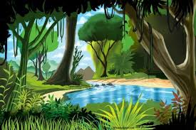 jungle wallpaper cartoon. Interesting Wallpaper Cartoon Rainforest Scenery   Cartoons Wallpaper Xpx This Cool Jungle  Scene Is In A Cartoon Style Inside Jungle Wallpaper J