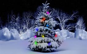 snowy christmas tree wallpaper. Simple Wallpaper Snowy Christmas Tree Wallpaper Viewing Gallery 2560x1600px On S
