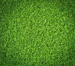 fake grass texture. Fake Grass Close Up. 535292_323123797811437_7870262844950681297_n Texture