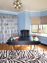 Zebra Rug Living Room Photos Hgtv Modern Living Room With Zebra Print Rug Loversiq