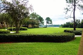 view from room garden wing disney s contemporary resort from yourfirstvisit net
