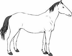 Free Horse Coloring Pages From Mustangs To Lipizzaners
