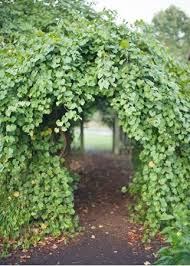 Small Picture 83 best Arbors Gates images on Pinterest Garden gate Garden