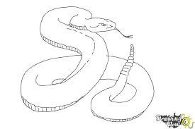 snake drawings step by step. Delighful Step How To Draw A Realistic Snake  Step 8 Inside Drawings By
