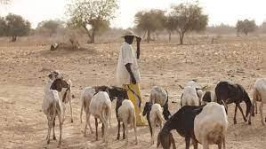 Landwirtschaft in Burkina Faso – Gefahren durch die Neue Allianz der G8