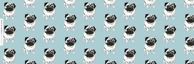 black pug wallpaper tumblr.  Pug Download Background To Black Pug Wallpaper Tumblr