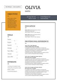 Modern Resume Template Preeminent Resume Mycvfactory