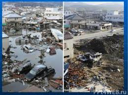 essay about tsunami similar articles