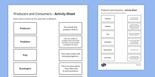 Producer And Consumer Venn Diagram Producers And Consumers Match And Draw