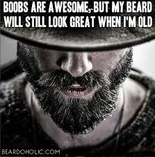 Beard Quotes Fascinating Best Beard Memes And Quotes Best Beard Humor Funny Quotes And