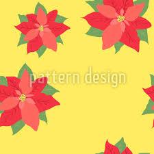 Designtapete Weihnachtsstern In Blüte Jetzt Bestellen