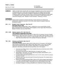 Example Retail Resume Recreation Leader Sample Resume Sample