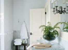 Spa By Sherwin Williams Paint Color  HouzzSpa Bathroom Colors