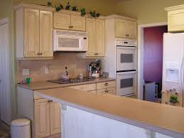 Old Kitchen Furniture Painting Old Kitchen Cabinets Before After Pictures Janefargo