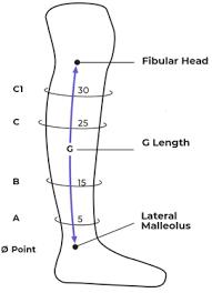 Compreflex Sizing Chart Compreflex Transition Calf