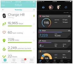 Fitbit Vs Garmin Which Fitness Tracker Is Best For You
