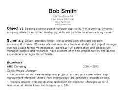Examples Of Objective In A Resume Examples Of Objective In A Resume