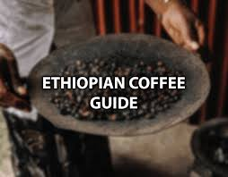 Ghimbi coffee is known to have a heavier body than ethiopian harrar coffees, and is also more balanced with a longer lasting body. Best Ethiopian Coffee Top 5 Tasty Ethiopian Coffee Beans