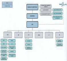 Coo Org Chart Organizational Structure Yiaco Medical Kuwait