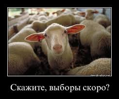 СБУ и ГПУ проигнорировали мои запросы о российском гражданстве Труханова, - Найем - Цензор.НЕТ 5475