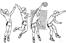 Министерство образования и науки РФ Реферат Волейбол doc