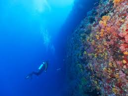 it s time for the next wave of ocean exploration and protection