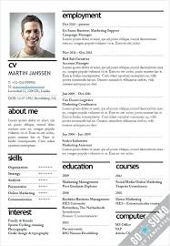Free Gray Sample Resume Template Cv For 16 Year Old Student ...