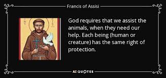 Francis Of Assisi Quotes Extraordinary TOP 48 QUOTES BY FRANCIS OF ASSISI Of 48 AZ Quotes