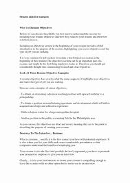 Magnificent What Do You Put In Your Resume Profile Gallery