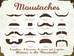 Mustache Styles Chart Trucker Mustache Top 10 Funny Mustache Names Commonly Used
