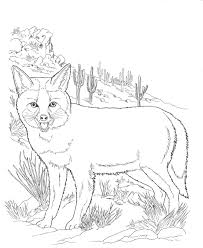 Desert Animals And Plants Coloring Pages At Getdrawingscom Free