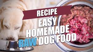 easy homemade raw dog food recipe fast and healthy