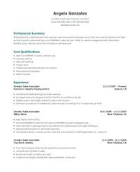 Sales Associate Job Description Resume Enchanting Example Of Sales Associate Resume Resume Of Sales Associate Here Are