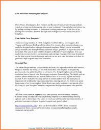 Essay Summary Examples Sample Market Analysis Summary Business Plan Target Example