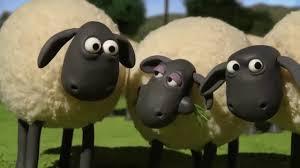 Shaun The Sheep 2019 #Đồ Chơi Mới Của Timmy #Những Chú Cừu Thông Minh Phần  Hay Nhất - YouTube