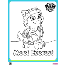 Paw patrol paw patrol meet everest colouring pack colouring pages paw patrol charters coloring pages paw patrol uk