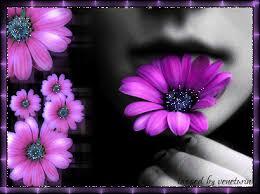 يشتري الورد ؟؟؟؟؟؟ images?q=tbn:ANd9GcS