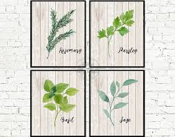 kitchen art herb print kitchen decor kitchen print pertaining to herb wall art gallery 4