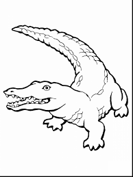 Small Picture magnificent crocodile coloring pages to print with alligator