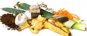 نتیجه تصویری برای image of waste food product