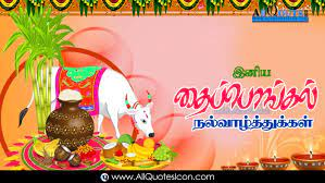Sankranti Thai Pongal Wishes In Tamil ...