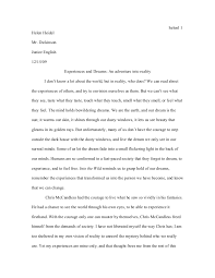 into the wild essay