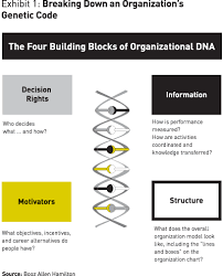 Booz Allen Hamilton Org Chart The 7 Types Of Organizational Dna