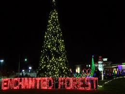 Festival Of Lights 2017 Peoria Il Folepis Enchanted Forest Lights Up East Peoria