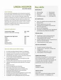 Data Entry Resume Template Beauteous Data Entry Resume Objective Special Entry Level Resume Templates Cv