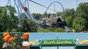 family vacation to busch gardens williamsburg in summer theresa s reviews