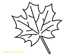 maple leaf coloring page with 100 ideas pages on gerardmann of 11